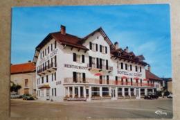 PONT DE NAVOY - Hotel Restaurant Du Cerf ( 39 Jura ) - Autres Communes