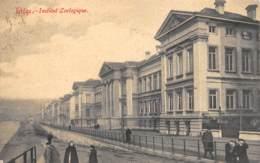 LIEGE - Institut Zoologique - Liège