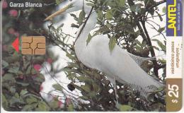 URUGUAY - Bird, Garza Blanca(121a), 06/00, Used - Uruguay