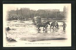 CPA Ain-Sefra, La Crue, Un Fourgon En Panne, Attelagesschaden In Fluss - Alger