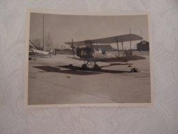 Photo Originale Avion Aviation Tiger Moth à Cognac 1949 - Aviation