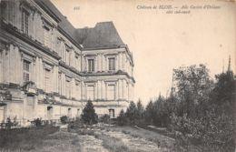 41-BLOIS LE CHÂTEAU-N°T1096-A/0209 - Blois