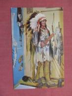 PLAINS WARRIOR SIOUX  Ref 3734 - Indiens De L'Amerique Du Nord