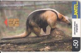 URUGUAY - Animal, Oso Hormiguero(249a), 10/02, Used - Uruguay