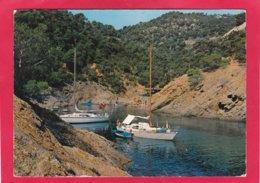 Modern Post Card Of Cala Bona, Son Cervera, Autonomous Community Of Balearic Islands, Spain,A33. - Spanje