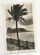 Cp, GIBRALTAR , Artistic View Of The Rock From Shores ,vista Artistica Del Penon Desde Espana , Voyagée - Gibilterra