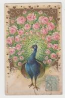 AC145 - Illustration Animaux - Oiseau - Paon - Très Jolie Carte Gaufrée - Oiseaux