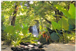 Polynésie Française- Une Belle Cascade De Tahiti Située à HITIA (Hitiaa)(waterfall )(photoTeva Sylvain 1098)@*PRIX  FIXE - Polynésie Française