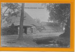 WECHELDERZANDE:  STEINHOEF-HOEVE- - Lille