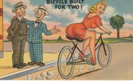 That's What I Call A Bicycle Built For Two! - Humour