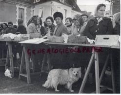 24  - EXCIDEUIL - UN MARCHE AU GRAS EN 1975- RARE PHOTO ORIGINALE PERIGORD DORDOGNE - Beroepen