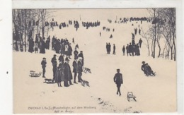 Zwickau - Rutschbahn Auf Dem Windberg  - 1909           (A-138-190413) - Zwickau