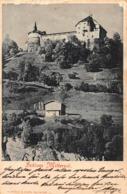 SCHLOSS MITTERSILL  PINZGAU AUSTRIA~1900 WURTHLE & SOHN PHOTO POSTCARD 42477 - Autriche