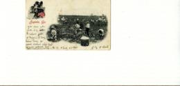 "GA - Georgia - Augusta, Ga. - "" Picking Cotton "" Arthur Livingstone, Publisher, New York - 1904 - Augusta"