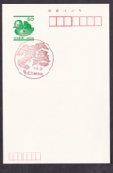 Japan Scenic Postmark, Monorail Castle (js3699) - Japan