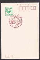 Japan Scenic Postmark, Ski (js3839) - Japan