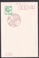 Japan Scenic Postmark, Ski (js3841) - Japan