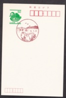 Japan Scenic Postmark, Fish Shell (js3850) - Japan