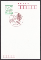 Japan Scenic Postmark, Rowing Boat (js3852) - Japan