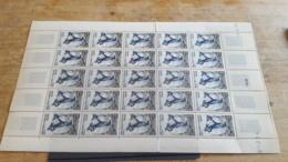 LOT 480041 TIMBRE DE COLONIE TAAF NEUF** LUXE FEUILLE - Franse Zuidelijke En Antarctische Gebieden (TAAF)
