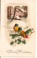 L60b069 - Bonne Année - Paysage De Neige Et Moineaux - L&P N°2351 - New Year