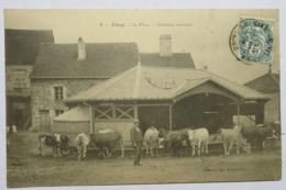 C. P. A. : 70 VITREY : La Place, Fontaine Couverte, Vaches, Animé, Timbre En 1904 - France