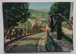 BADIA TEDALDA (AREZZO) - Salita Al Castello - Vg T2 - Arezzo