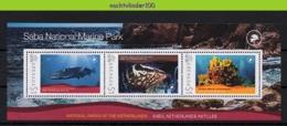 Nff193b FAUNA VISSEN KORAAL BARRACUDA NATIONAL PARC CORAL FISH FISCHE POISSONS MARINE LIFE GRENADA 2009 PF/MNH - Fishes
