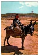 SPAIN POSTAL POST CARD BURRO BURROS BURRITO DONKEY DONKEYS BORRICO ÂNE MULI DONK MESÓN DE DON QUIJOTE LA MANCHA REGIÓN.. - Burros