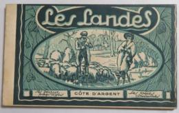 Carnet Complet De 20 Cartes Postales Anciennes Des LANDES: Chasse à La Palombe, Bergère Sur échasses, Noce Scènes De Vie - France