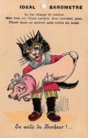 CPA à Système Animal Humanisé Position Humaine Chat Noir Cat Black Cochon Porc Pig Baromètre Fantaisie Illustrateur - A Systèmes