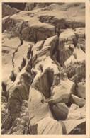 74 Haute SAVOIE Les Crevasses Du Glacier De Planpansière Aux Grandes Jorasses - Otros Municipios