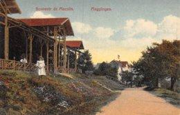 PIE-Z To-19-2929 : SOUVENIR DE MACOLIN. MAGGLINGEN. - Sin Clasificación