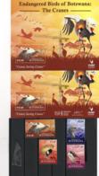 2019 BOTSWANA - Cranes - Uccelli