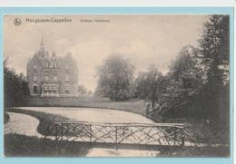 Hoogboom-Cappellen : Château Heidelust - Kapellen