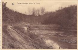 Thy Le Bauduin, L'Etang Du Chesley (pk64836) - Florennes