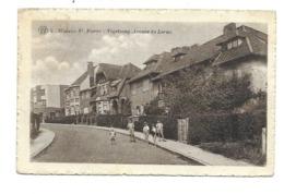 Woluwe-Saint-Pierre - Woluwe-St-Pierre - St-Pieters-Woluwe
