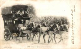 1901   ALGERIE DILIGENCE DE L'INTERIEUR - Argelia