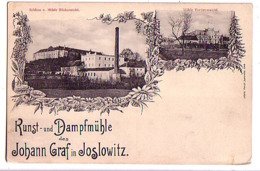 Jaroslavice  Joslowitz Schloss U. Muhle Ruckansicht, Muhle Vorderansicht - Czech Republic