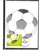 3540 Sport - Championnat Du Monde De Football 2006 En Allemagne - Cartoline Maximum