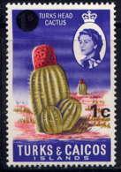 TURKS - 223** - TÊTE DE CACTUS - Turks E Caicos