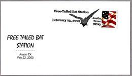 FREE TAILED BAT - MURCIELAGO. Austin TX 2003 - Fledermäuse