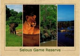 TANZANIA. FAUNA. ELEPHANT - LION... SELOUS GAME RESERVE. GA419. (486) - Tanzanía
