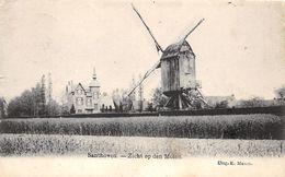 BB163 Santhove Zicht Op Den Molen 1906 - Zandhoven