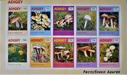 ADIGEY - CHAMPIGNONS 1993 - NEUF **  - PH 19112511 - ON-DENTELE - Vignettes De Fantaisie