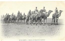 Beni Abbes Peloton  De Sahariens A Machara - Sahara Occidental