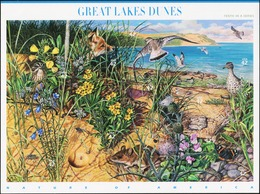 UNITED STATES USA 2007 Nature Of America Great Lakes Dunes Fox Birds Insects Animals Fauna MNH - Birds