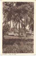 Les Colonies - Cases à DOUALA - Vente Directe X - Cameroon