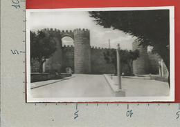 CARTOLINA NV SPAGNA - AVILA - Puerta De San Vicente - 9 X 14 - Ávila