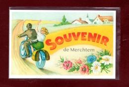 BELGIQUE-CARTE POSTALE MERCHTEM - Merchtem
